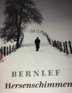 Cover van 'Hersenschimmen'